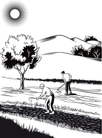 Agricultural landscape, cultivated by two farmers Illustration