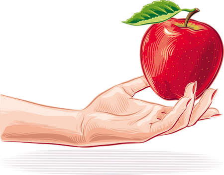 Female hand offering an apple. Illustration