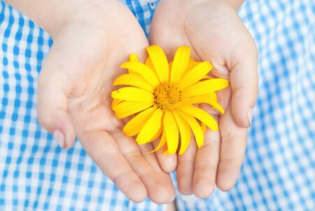 girl  care: Kid Holding Yellow Flowers in Hands. Happy Children Concept. Environmental Protection Concept. Summer Background