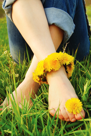 adorned: Feet of Young Woman on the Grass adorned with Dandelions Flowers Stock Photo