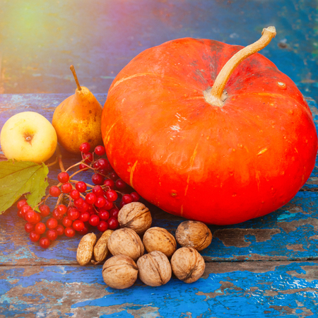 Pumpkin Nuts Viburnum and Fruit on the blue wooden Background - Autumn Countryside Harvest - Healthy Garden Food Concept Stock Photo