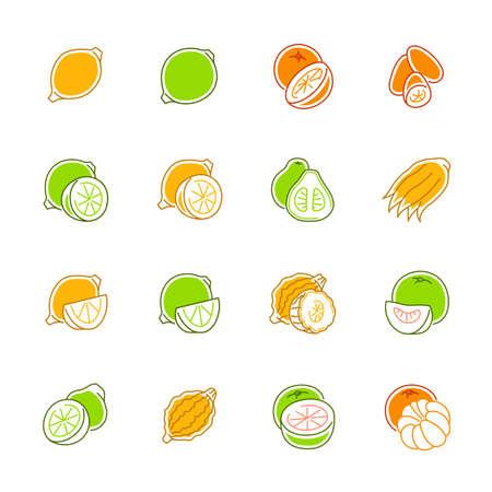 Citrus fruits icons - Lemon, orange and pomelo Illustration