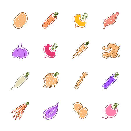Vegetables icons - Potato, carrot and garlic.