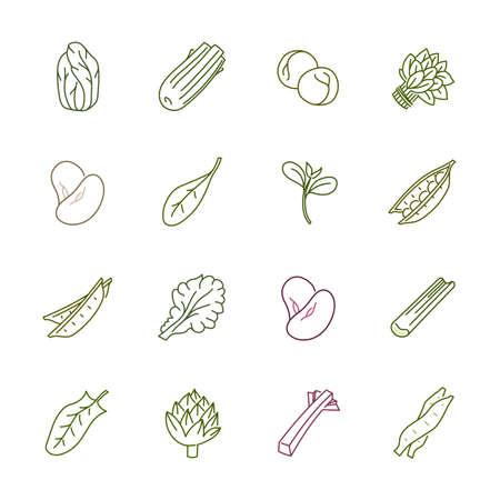Groenten iconen - Sla, Spinazie, Erwt En Bonen