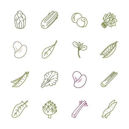 rhubarb: Vegetables icons - Lettuce, spinach, pea and beans