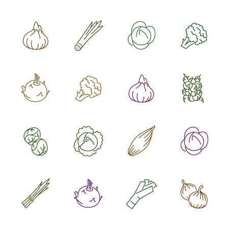 Vegetables icons. Vegetables and seasoning in outline style. Vegetarian food signs. Ilustracja