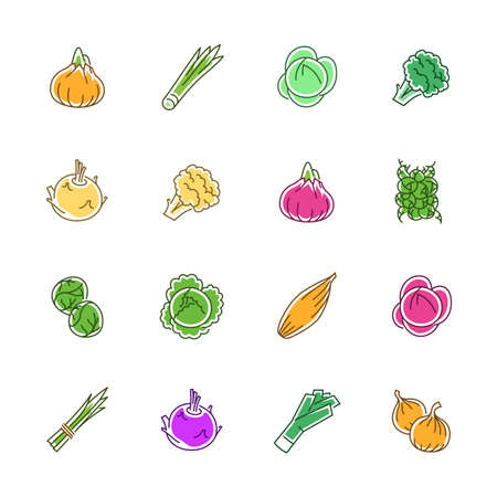 Vegetables icons. Vegetables and seasoning in filled outline style. Ilustracja