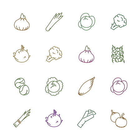 Vegetables icons. Vegetables and seasoning in outline style.