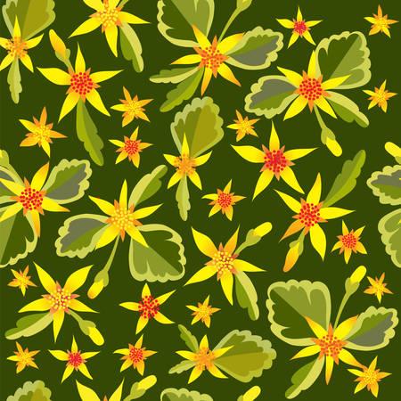 crassula: Flower background with Crassula.  Illustration