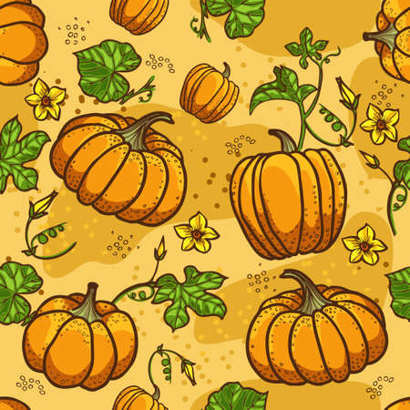 pumpkin patch: Pumpkin Background seamless pattern