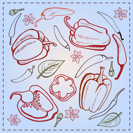 peper: Hot peppers, Bulgarian pepper, vintage.  Vector illustration