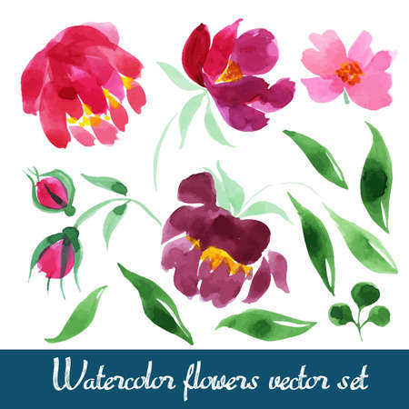 Set of beautiful watercolor flowers Illustration