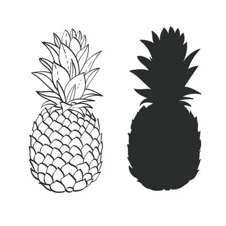 dessin noir et blanc: Ananas en noir et blanc
