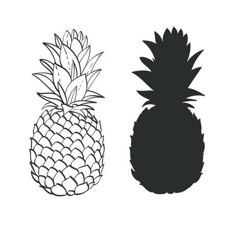 black grunge background: Black and white Pineapple Illustration