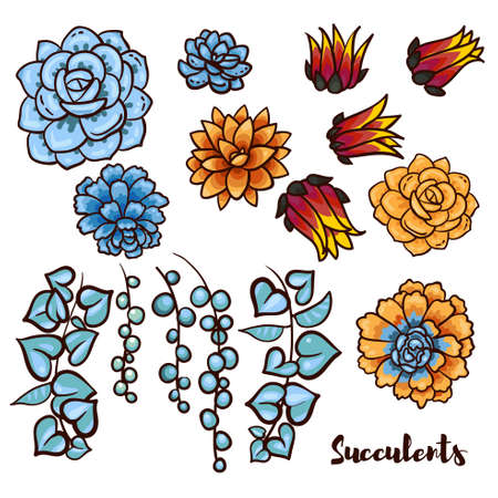 decal: Succulents set  In the hand drawn style. Set for scrapbooking, decal, stickers