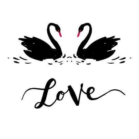 swans: Inscription Love a couple of black swans. Romantic lettering