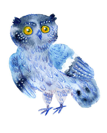 Sweet watercolor owl. Funny blue bird.