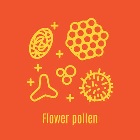 Pollen, a product of bees and beekeeping. A useful organic amino acid. Linear style. Vector illustration Illustration