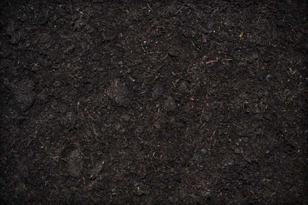 business backgound: Soil texture background