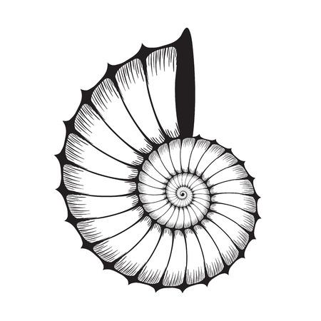 Sea shell clam silhouette on white Ilustração