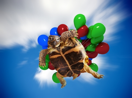 Funny turtle flying on balloons. Stock Photo