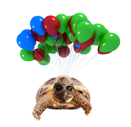 Funny turtle flying on balloons isolated on white