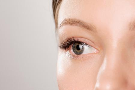 Closeup shot of female eye with day makeup. Perfect eyelashes. Stock Photo