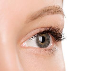 Closeup shot of female eye with day makeup. Perfect eyelashes. Standard-Bild