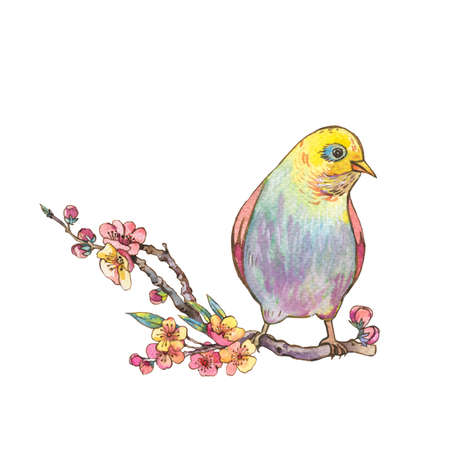 Watercolor floral spring greeting card, pink blooming branches of cherry and butterflies, beautiful bird isolated on white background Standard-Bild - 112650660