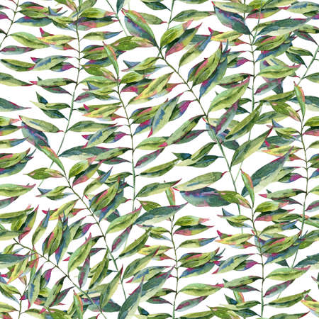 Watercolor seamless pattern with green exotic leaves. Natural tropical endless texture, greenery botanical illustration on white background Stock Photo