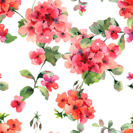 Flower Geranium Seamess Pattern, Pelargonium Texture, Red Flowers, Natural Summer IIllustration on White Background Stockfoto