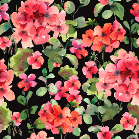 Flower Geranium Seamess Pattern, Pelargonium Texture, Red Flowers, Natural Summer IIllustration on Black Background Stockfoto