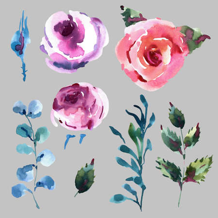 Classical Watercolor Floral Set of Pink Watercolor Roses, Wildflowers, Twigs, Leaves, Buds. Vintage Floral Design Collection Isolated on White Background.