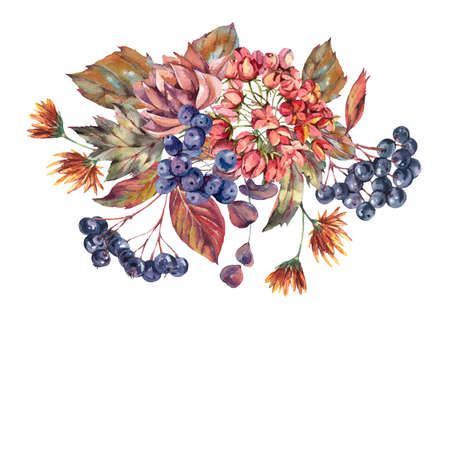 Watercolor vintage bouquet with chokeberry, autumn leaves, blue berries, lavender. Natural botanical greeting card isolated on white background. Banque d'images - 131415796