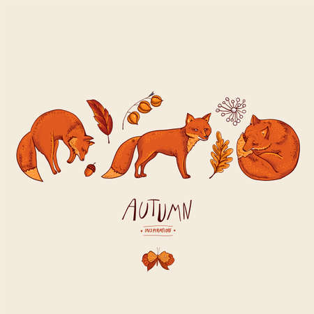 Invitation card of red fox, autumn orange leaves. Vector vintage hand drawn greeting card, natural elements.