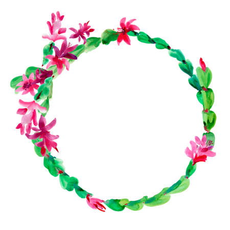Watercolor Christmas Cactus Wreath, Thanksgiving cactus Round Frame, Blooming Flowers Schlumbergera Isolated on White Background, Pink Floral Zygocactus Illustration for Holidays Design