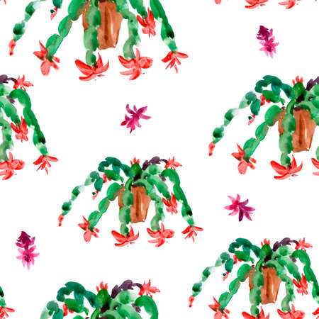 Watercolor Seamless Pattern of Christmas Cactus, Thanksgiving cactus, Blooming Flowers Schlumbergera on White Background, Pink Floral Zygocactus Texture for Holidays Design