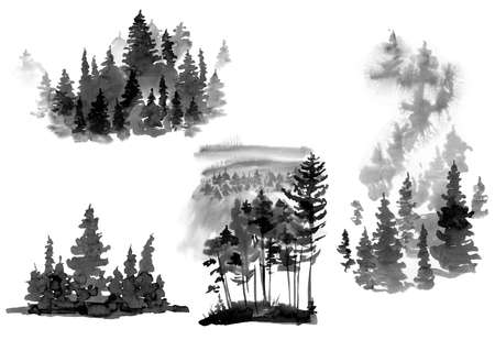 Set of Black and White Watercolor Silhouette of Conifer Tree, Monochrome Winter Woodland, Forest Landscape with Pine and Fir Trees, Natural Collection