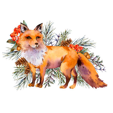 Watercolor woodland fox greeting card, Cute fox, Spruce branch, berries, pine cone and autumn leaves. Natural illustration isolated on white background