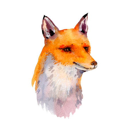 Watercolor woodland fox greeting card, Natural illustration isolated on white background Stock fotó