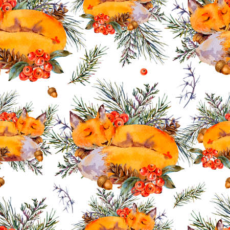 Watercolor woodland fox seamless pattern, Sleeping fox in the forest. Spruce branch, berries, pine cone and autumn leaves. Natural textured on white background