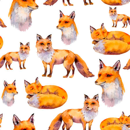 Watercolor woodland foxes seamless pattern, portrait fox, sleeping fox, Natural texture on white background. Watercolour animals. Stock fotó