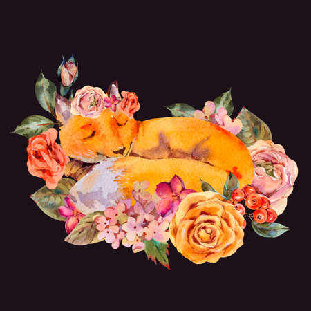 Watercolor floral fox greeting card, Sleeping fox, roses, hydrangea, wildflowers. Natural illustration isolated on black background