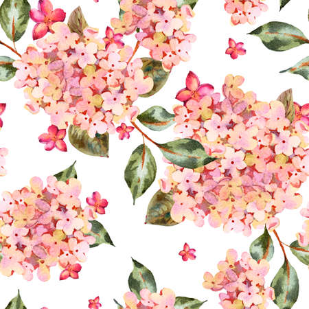 Watercolor seamless pattern with pink blooming hydrangea, small wildflowers. Natural botanical floral texture on white background, Summer Flowers