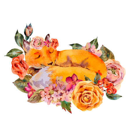 Watercolor floral fox greeting card, Sleeping fox, roses, hydrangea, wildflowers. Natural illustration isolated on white background