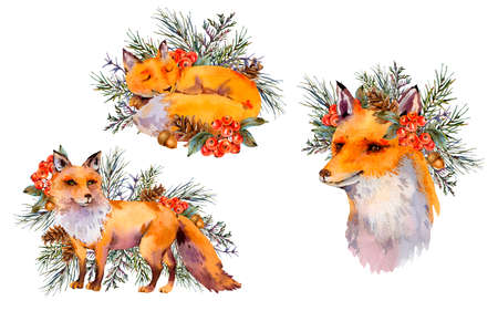 Set of watercolor woodland fox, Cute fox with forest wreath. Spruce branch, berries, pine cone and autumn leaves. Natural illustration of forest animals isolated on white background Stock fotó