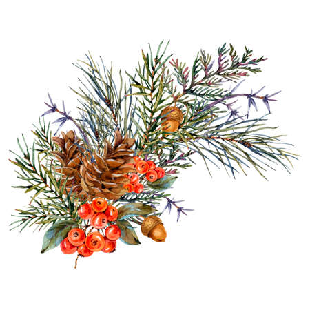 Watercolor winter bouquet with spruce branches, pine cones, acorn, red berries. Natural Christmas greeting card isolated on white background.