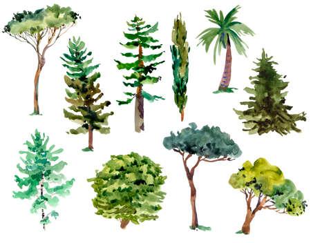 Aquarell natürlicher Satz grüner Bäume, Waldsammlung lokalisiert auf weißem Hintergrund. Waldgestaltungselemente. Standard-Bild