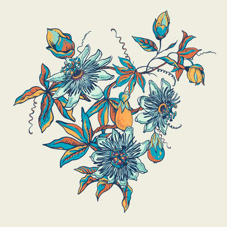 Vintage blue floral natural collection. Passiflora greeting card, flowers, leaves. Set of scrapbook objects for party, wedding, birthday. Hand drawn vector illustration Vetores