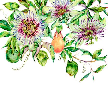 Carte de voeux aquarelle Passiflora, fleurs, feuilles. Collection naturelle florale vintage. Ensemble d'objets de scrapbooking pour fête, mariage, anniversaire. Illustration dessinée à la main. Banque d'images